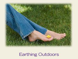 Product footer image earthing