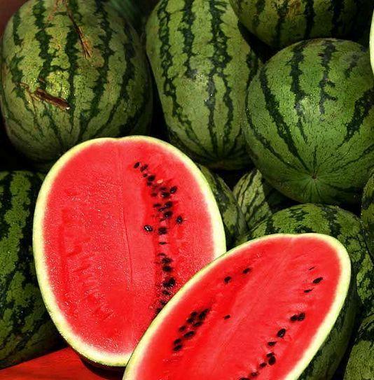 10760591 watermelon