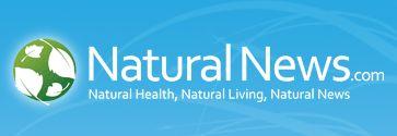 NaturalNews Logo 363x125