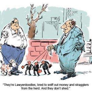 Friday Funny: Lawyer Joke   The Gentlewoman Farmer