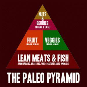 Paleo pyramid 300x300