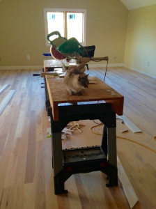 Moxie inspecting the trim saw upstairs.